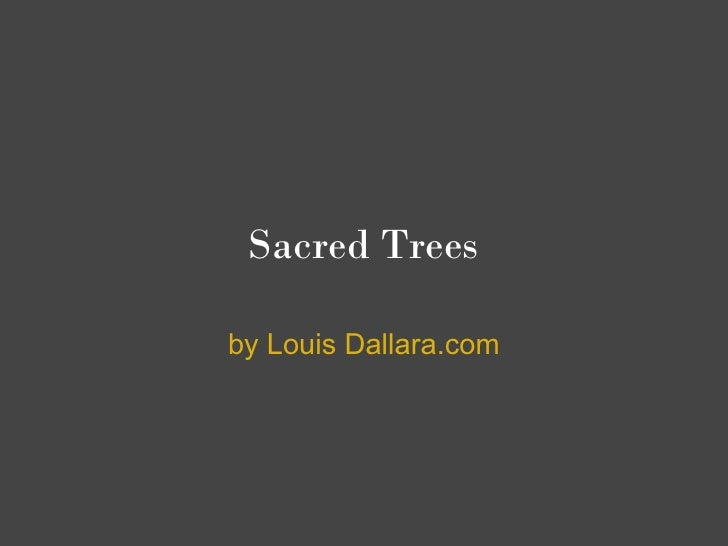 Sacred Trees  by Louis Dallara.com