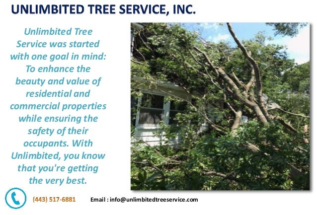 Email : info@unlimbitedtreeservice.com Unlimbited Tree Service was started with one goal in mind: To enhance the beauty an...