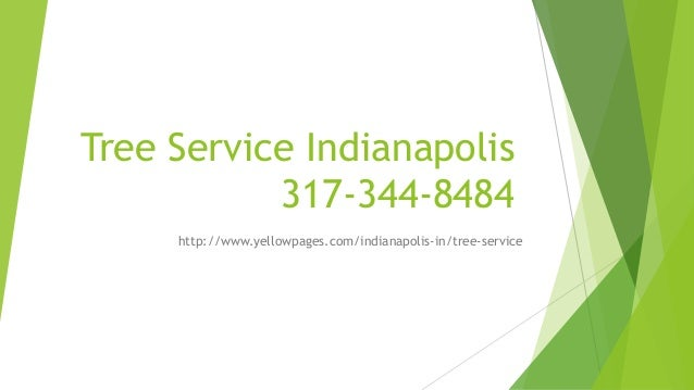 Tree Service Indianapolis 317-344-8484 http://www.yellowpages.com/indianapolis-in/tree-service