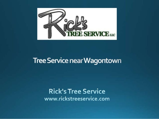 Tree Service near Wagontown