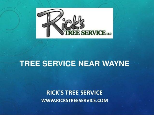 RICK'S TREE SERVICE WWW.RICKSTREESERVICE.COM TREE SERVICE NEAR WAYNE