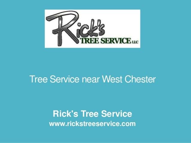 Rick's Tree Service www.rickstreeservice.com Tree Service near West Chester
