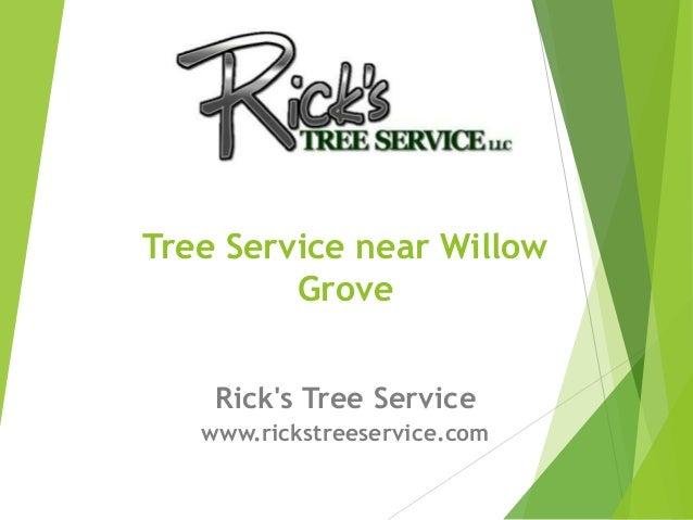 Rick's Tree Service www.rickstreeservice.com Tree Service near Willow Grove
