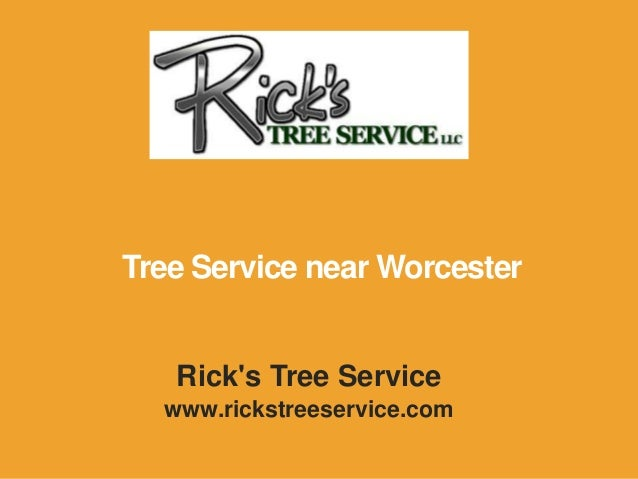 Rick's Tree Service www.rickstreeservice.com Tree Service near Worcester