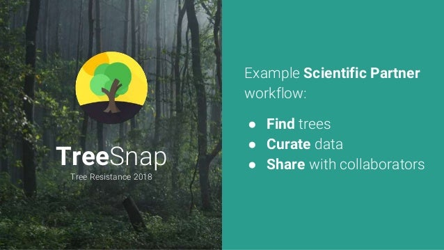 TreeSnap Tree Resistance 2018 Example Scientific Partner workflow: ● Find trees ● Curate data ● Share with collaborators