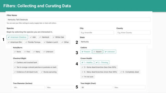 Filters: Collecting and Curating Data 2 1 3 4 5