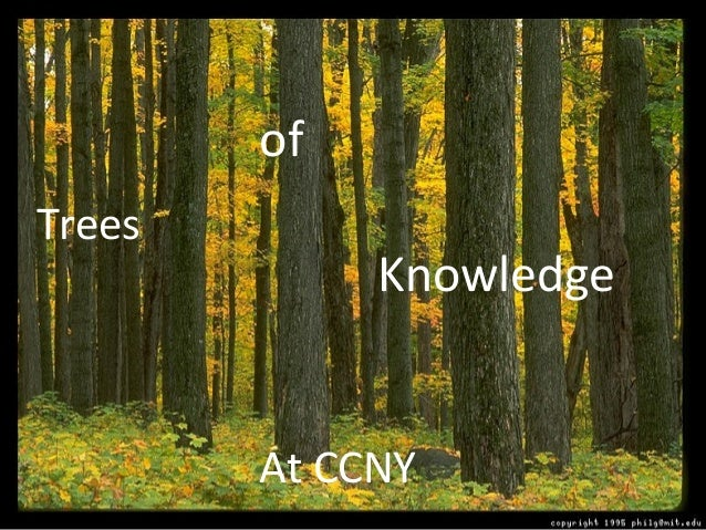 Trees of Knowledge At CCNY