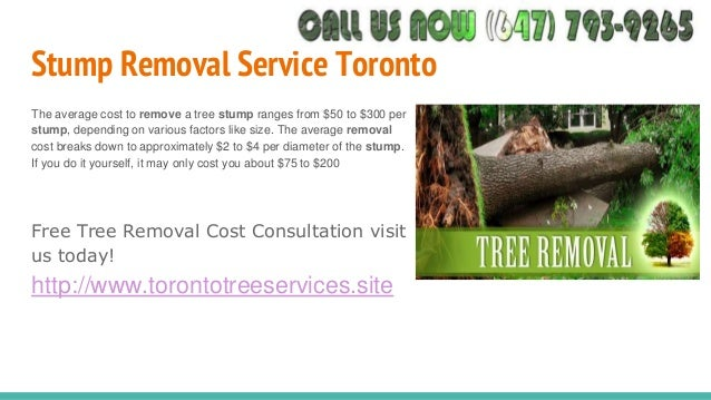 Tree removal oakville toronto tree services gta 647 793 9265 pine tree removal cost toronto pine trees removed at low cost in toronto 14 solutioingenieria Choice Image