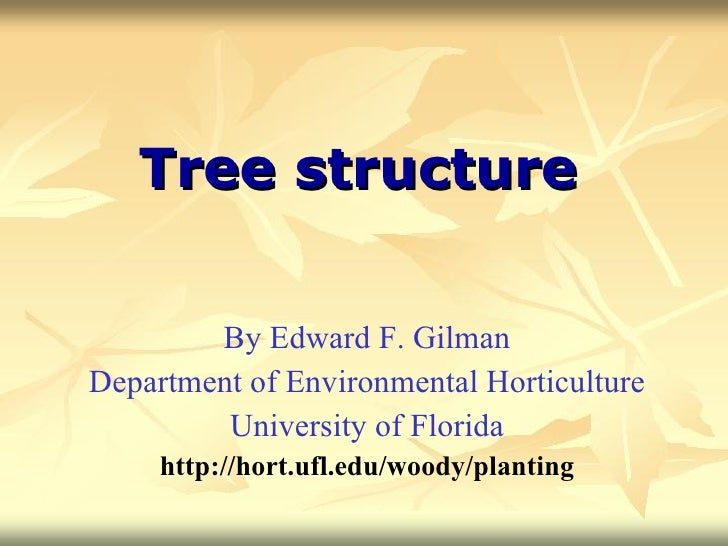 Tree structure By Edward F. Gilman Department of Environmental Horticulture University of Florida http://hort.ufl.edu/wood...