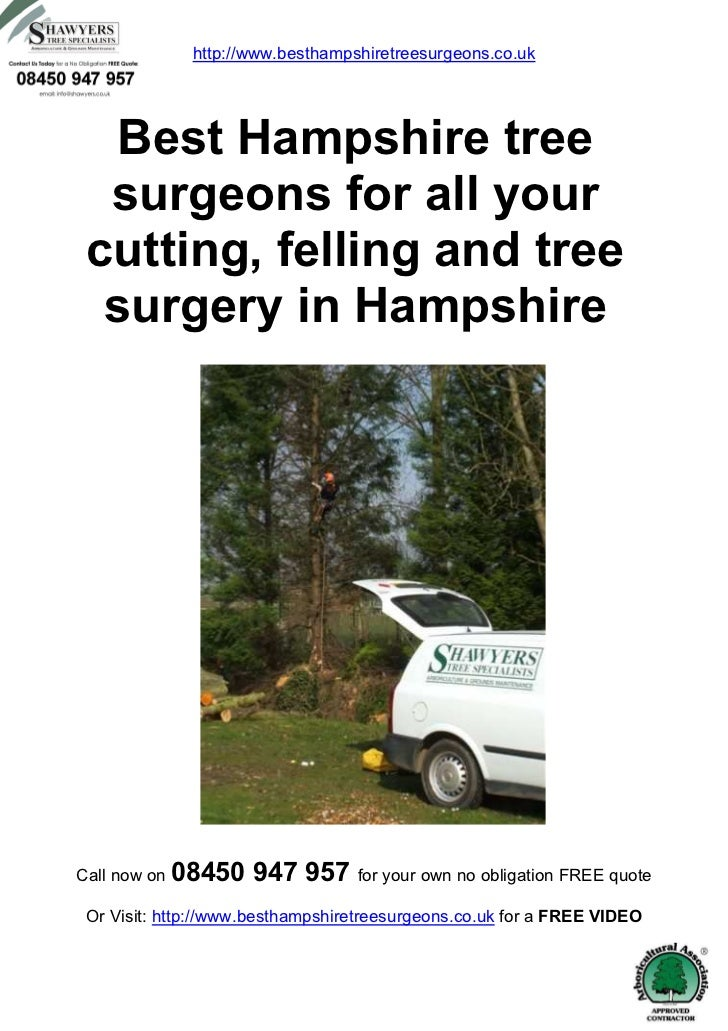 http://www.besthampshiretreesurgeons.co.uk   Best Hampshire tree  surgeons for all your cutting, felling and tree  surgery...