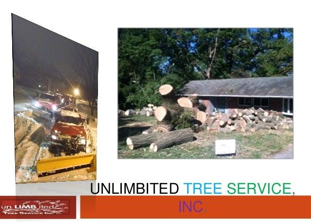 UNLIMBITED TREE SERVICE, INC.