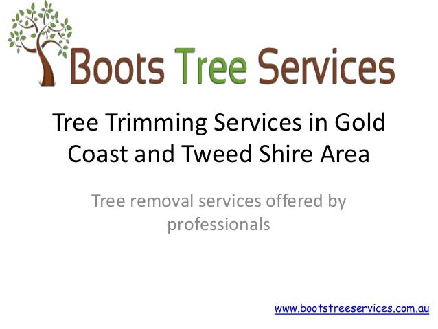 Tree Trimming Services in Gold  Coast and Tweed Shire Area  Tree removal services offered by  professionals  www.bootstree...