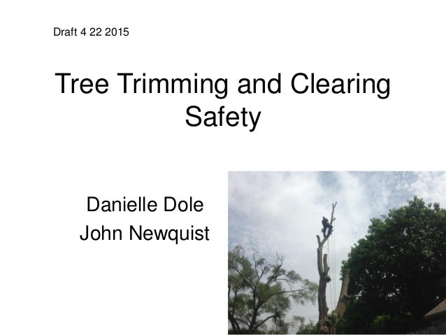 Tree Trimming and Clearing Safety Danielle Dole John Newquist Draft 4 22 2015