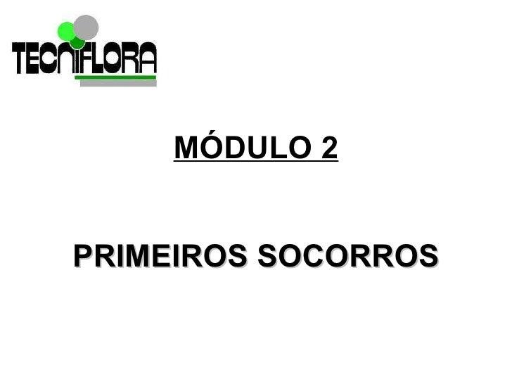 MÓDULO 2 <ul><li>PRIMEIROS SOCORROS </li></ul>