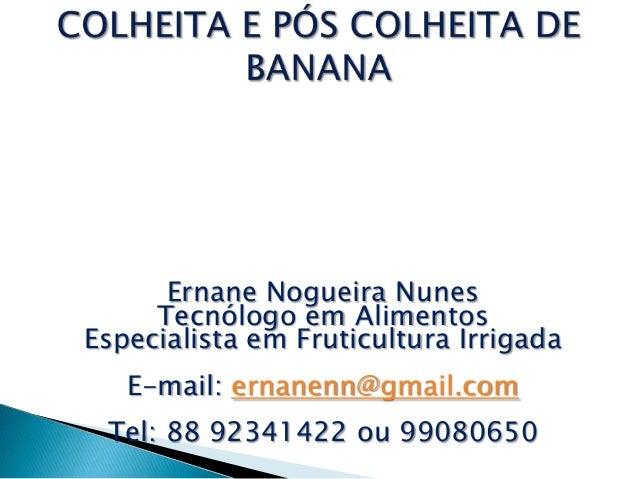 Ernane Nogueira Nunes     Tecnólogo em AlimentosEspecialista em Fruticultura Irrigada   E-mail: ernanenn@gmail.com Tel: 88...