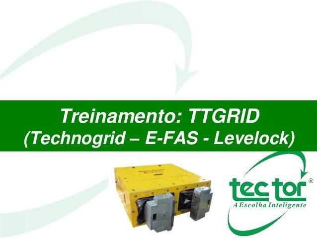 Treinamento: TTGRID (Technogrid – E-FAS - Levelock)