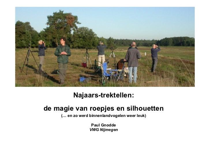 Najaars-trektellen:de magie van roepjes en silhouetten     (… en zo werd binnenlandvogelen weer leuk)                   Pa...
