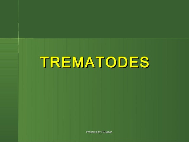 TREMATODES    Prepared by FZHapan