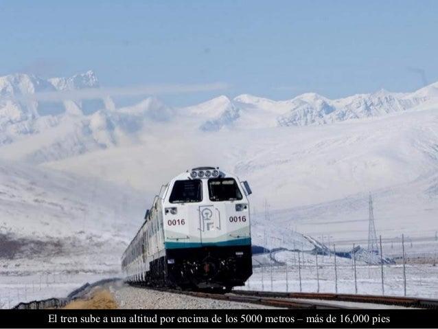 La longitud total del ferrocarril Qinghaig es de 1,956 km. La línea incluye el paso Tanggula, a 5,072m., (16,640 pies) sob...