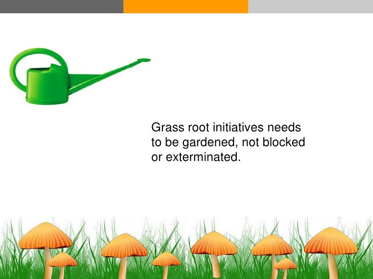 Grass root initiatives needs                            to be gardened, not blocked                            or extermin...