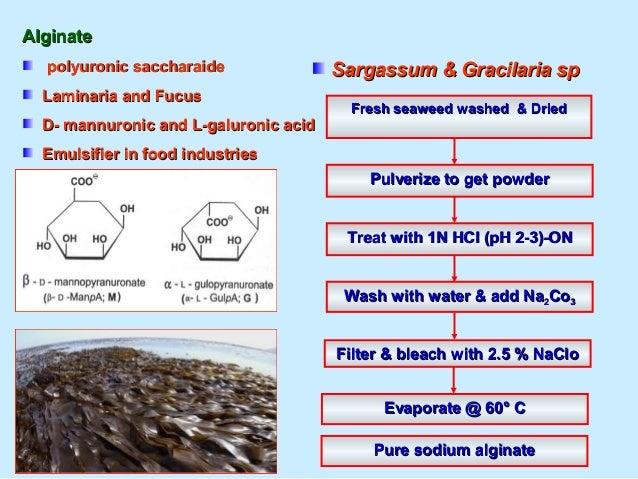 Fucoidon (Fucoidon (Foo–Koy–Den)) Sulfonated polysaccharidesSulfonated polysaccharides Antioxidants & immunostimulantsAnti...