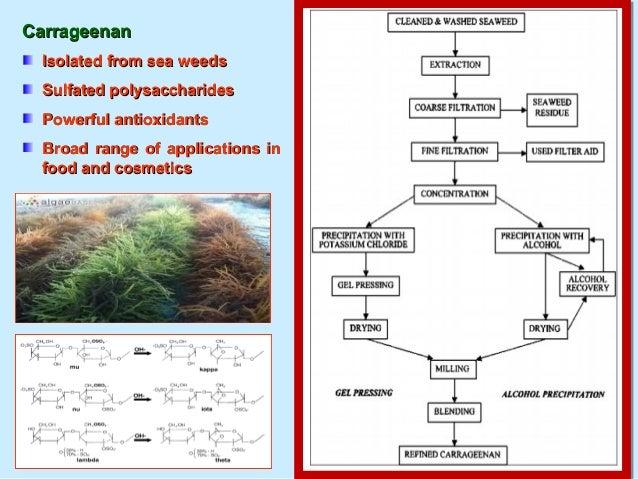 Problems in Marine Aquatic EnvironmentProblems in Marine Aquatic Environment Various sources- sediments, nutrients, pestic...