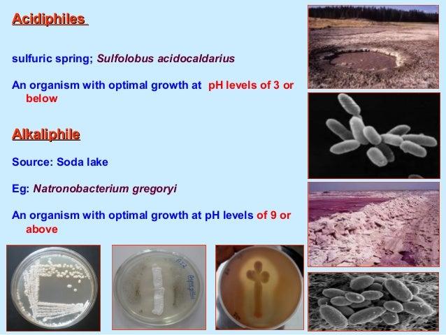 Aquaculture BiotechnologyAquaculture Biotechnology நீரவாழவியல் உயிரொதாழிலநடபவியல்நீரவாழவியல் உயிரொதாழிலநடபவியல்