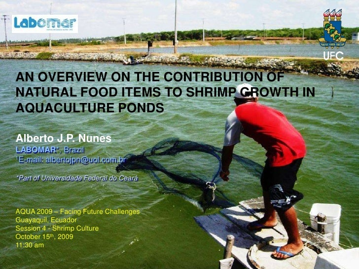 AN OVERVIEW ON THE CONTRIBUTION OF NATURAL FOOD ITEMS TO SHRIMP GROWTH IN AQUACULTURE PONDS  Alberto J.P. Nunes LABOMAR*, ...