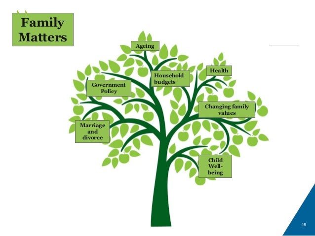 16 Government Policy Changing family values Ageing Child Well- being Marriage and divorce Health Household budgets Family ...