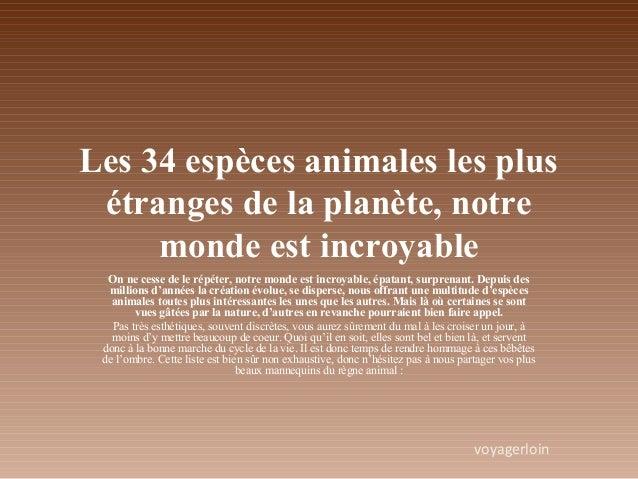 Les 34 espèces animales les plus étranges de la planète, notre monde est incroyable On ne cesse de le répéter, notre monde...