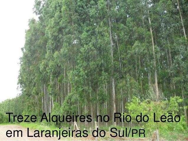 Treze Alqueires no Rio do Leão 01 Casa no terreno em Laranjeiras do Sul/PR