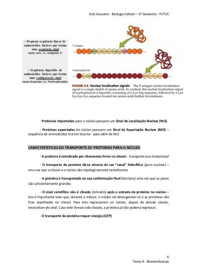 localização celular da proteina