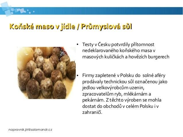 napravnik.jiri@salamandr.cz Koňské maso v jídle / Průmyslová sůlKoňské maso v jídle / Průmyslová sůl ● Testy v Česku potvr...