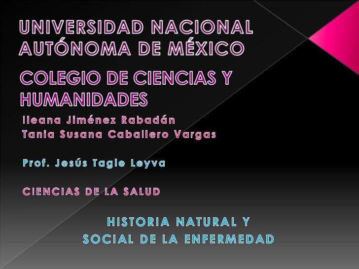 UNIVERSIDAD NACIONAL AUTÓNOMA DE MÉXICO<br />COLEGIO DE CIENCIAS Y HUMANIDADES<br />Ileana Jiménez Rabadán<br />Tania Susa...