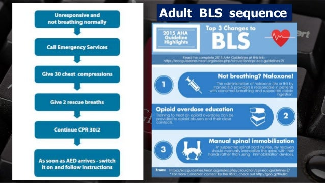 Free PowerPoint Templates Adult BLS sequence
