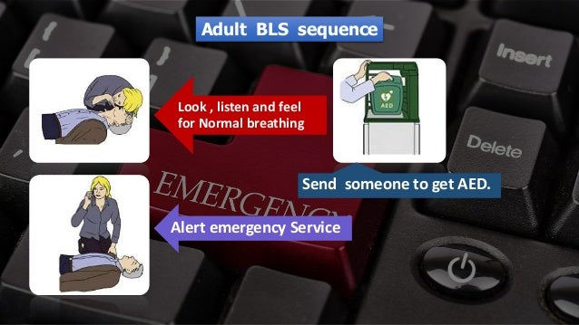 Free PowerPoint Templates Look , listen and feel for Normal breathing Alert emergency Service Send someone to get AED. Adu...
