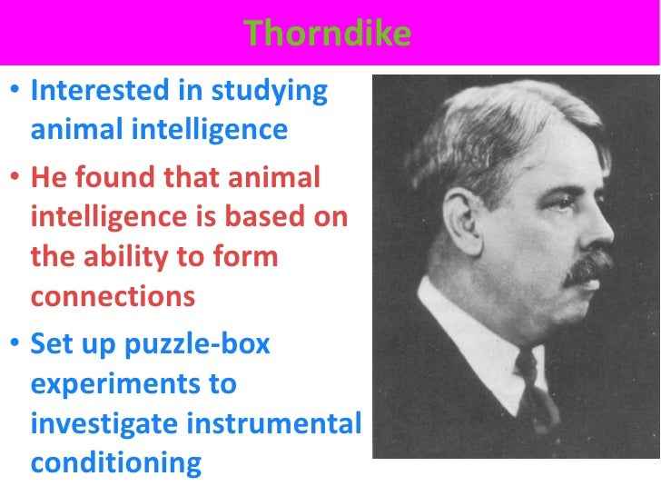 Thorndike• Interested in studying  animal intelligence• He found that animal  intelligence is based on  the ability to for...