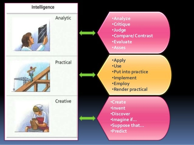 triarchic theory of intelligence examples