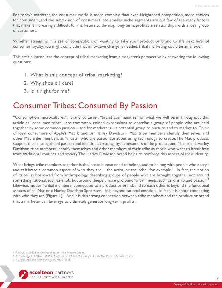 Tribal Marketing - Accelteon Slide 2