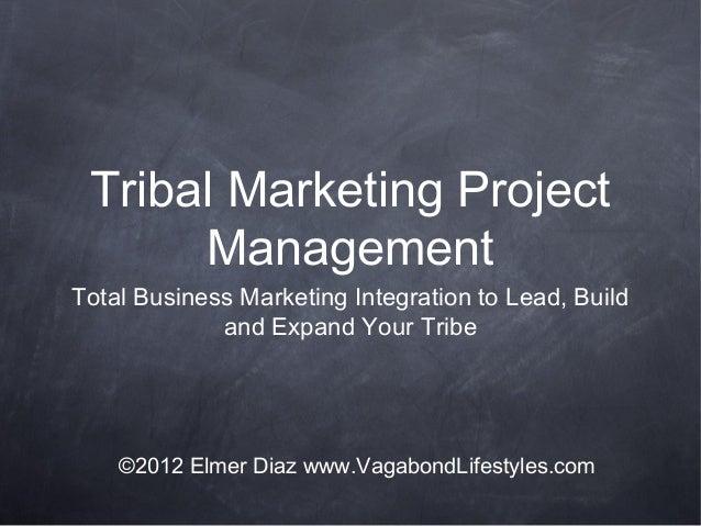 Tribal Marketing ProjectManagementTotal Business Marketing Integration to Lead, Buildand Expand Your Tribe©2012 Elmer Diaz...