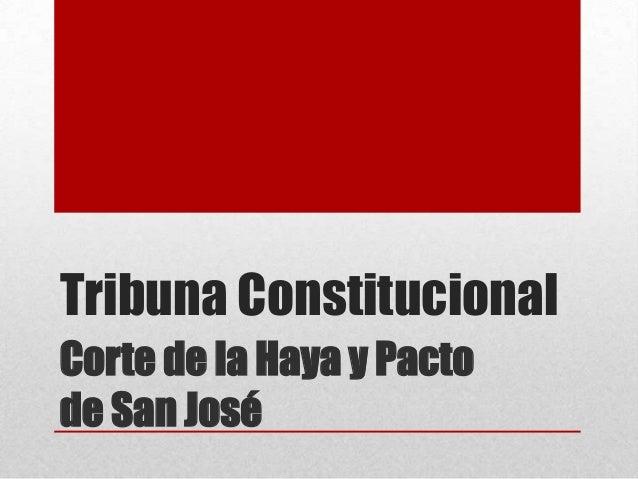 Tribuna Constitucional Corte de la Haya y Pacto de San José