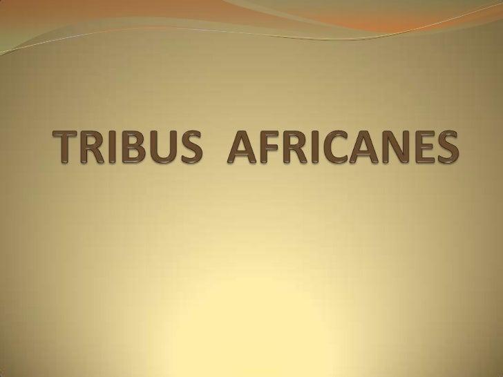 TRIBUS  AFRICANES<br />