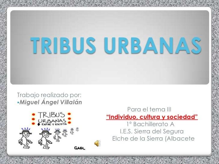 TRIBUS URBANAS Trabajo realizado por: Miguel Ángel Villalán                                   Para el tema III           ...