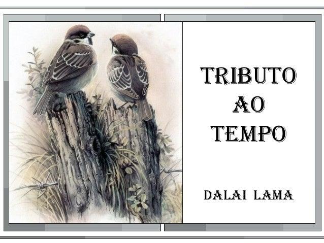 TribuTo ao Tempo Dalai lama