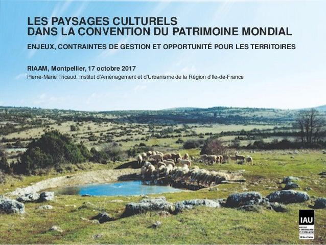 https://www.papillesetpupilles.fr/2013/05/lav ogne.html/ LES PAYSAGES CULTURELS DANS LA CONVENTION DU PATRIMOINE MONDIAL E...