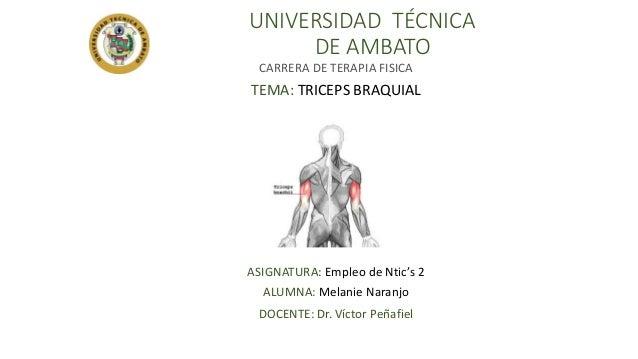 UNIVERSIDAD TÉCNICA DE AMBATO CARRERA DE TERAPIA FISICA TEMA: TRICEPS BRAQUIAL ASIGNATURA: Empleo de Ntic's 2 ALUMNA: Mela...