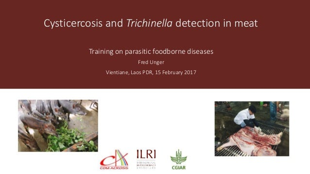 Cysticercosis and Trichinella detection in meat Training on parasitic foodborne diseases Fred Unger Vientiane, Laos PDR, 1...