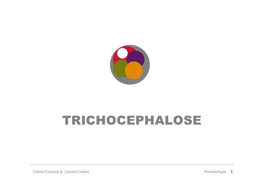 TRICHOCEPHALOSE   Céline François & Laurent Lokiec   Parasitologie   1