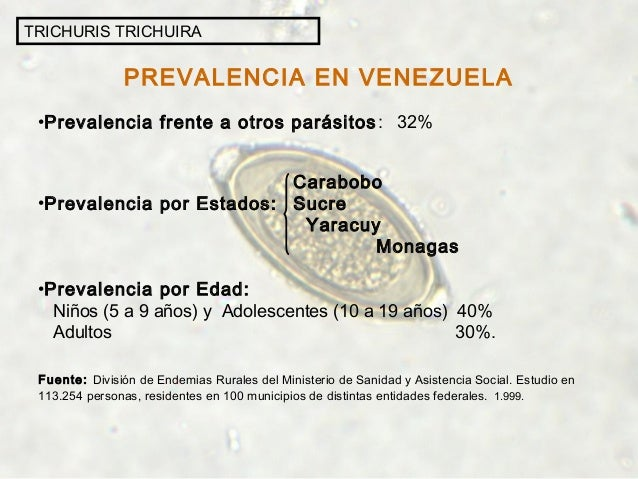 PREVALENCIA EN VENEZUELA •Prevalencia frente a otros parásitos: 32% Carabobo •Prevalencia por Estados: Sucre Yaracuy Monag...