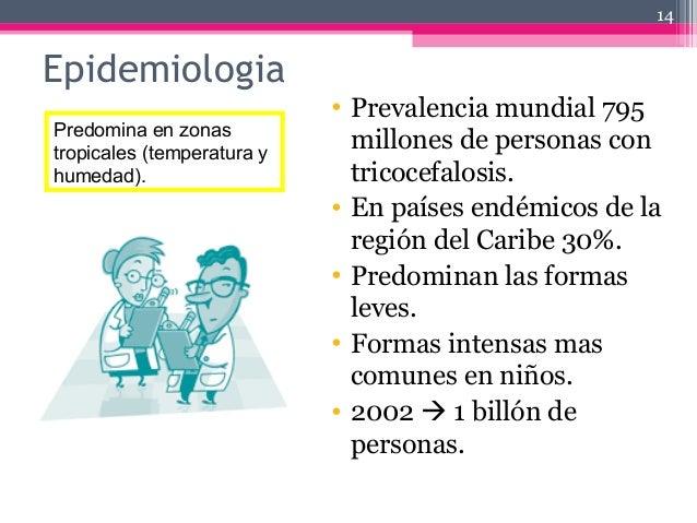 Epidemiologia • Prevalencia mundial 795 millones de personas con tricocefalosis. • En países endémicos de la región del Ca...